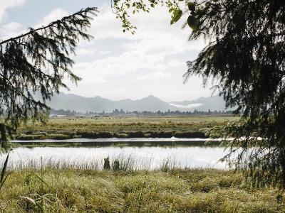 Pacific Northwest Oregon X-Adam Mead-Photographic Print