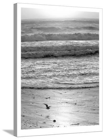 Pacific Ocean Seascape #22-Murray Bolesta-Stretched Canvas Print