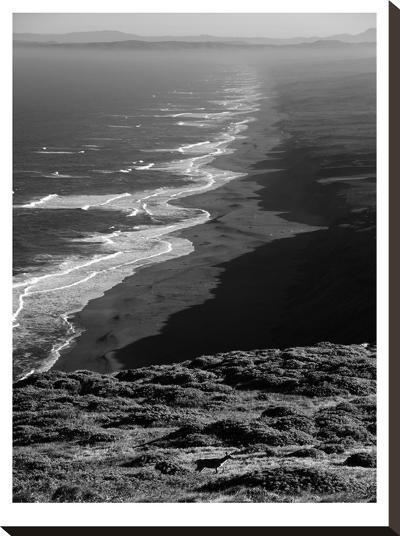 Pacific Ocean Seascape #59 B+W-Murray Bolesta-Stretched Canvas Print