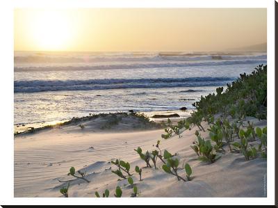Pacific Ocean Seascape #5-Murray Bolesta-Stretched Canvas Print