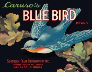 Caruso's Blue Bird Brand by Pacifica Island Art