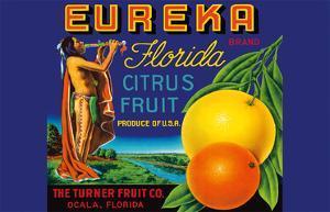 Eureka Brand Florida Citrus - The Turner Fruit Company by Pacifica Island Art