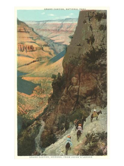 Pack Animals on Trail in Grand Canyon--Art Print