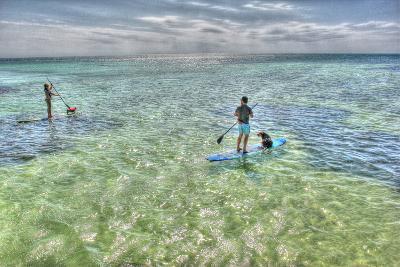 Paddle Board Pups-Robert Goldwitz-Photographic Print