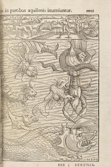 Page 1005 from 'Cosmographiae Universalis' by Sebastian Muenster, Basel, 1572--Giclee Print