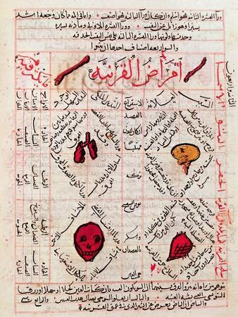 https://imgc.artprintimages.com/img/print/page-from-the-canon-of-medicine-by-avicenna_u-l-omheb0.jpg?p=0
