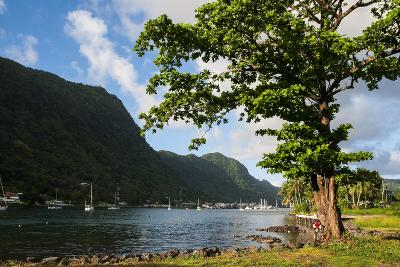Pago Pago Bay, Tutuila Island, American Samoa, South Pacific-Michael Runkel-Photographic Print