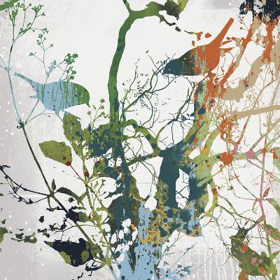 Painted Birds II-Ken Hurd-Giclee Print