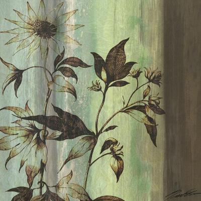 Painted Botanical I-John Butler-Art Print