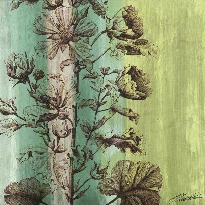 Painted Botanical II-John Butler-Art Print