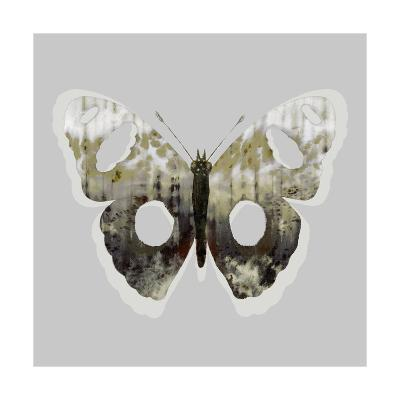 Painted Butterfly 2-THE Studio-Premium Giclee Print