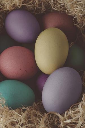 Painted Easter Eggs Nesting - Cross Processed-frannyanne-Photographic Print