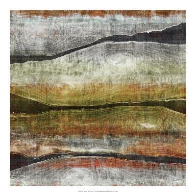Painted Live Edge I-John Butler-Art Print