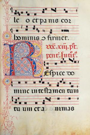 Gradual From Palm Sunday To the XXIV Sunday After Pentecost