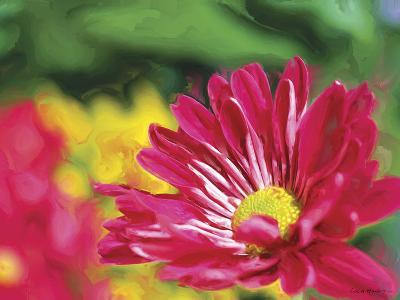 Painterly Flower VI-Lola Henry-Photographic Print
