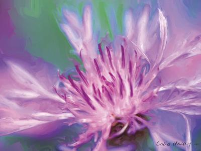 Painterly Flower VIII-Lola Henry-Photographic Print