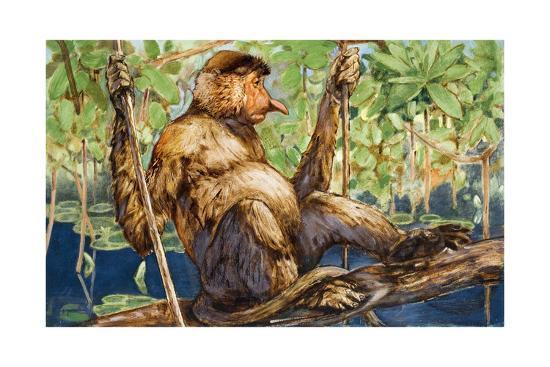 Painting of a Proboscis Monkey in a Borneo Rain Forest-Elie Cheverlange-Giclee Print