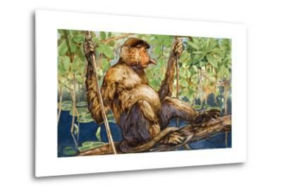 Painting of a Proboscis Monkey in a Borneo Rain Forest-Elie Cheverlange-Metal Print