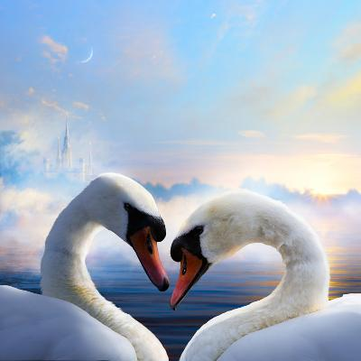 Pair of Swans in Love Floating on the Water at Sunrise of the Day-Konstanttin-Photographic Print