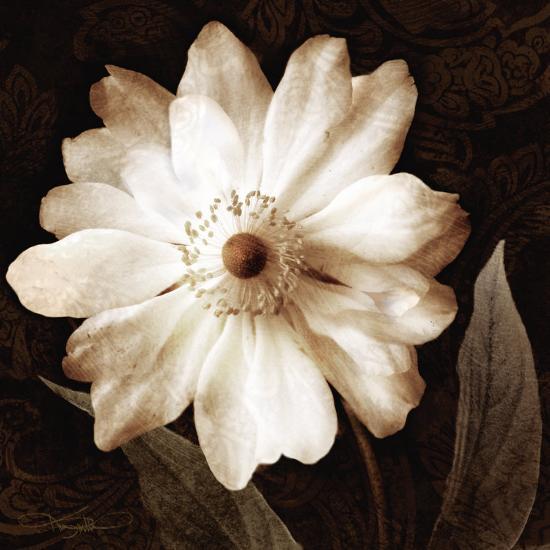 Paisley Blossom II-Keith Mallett-Art Print