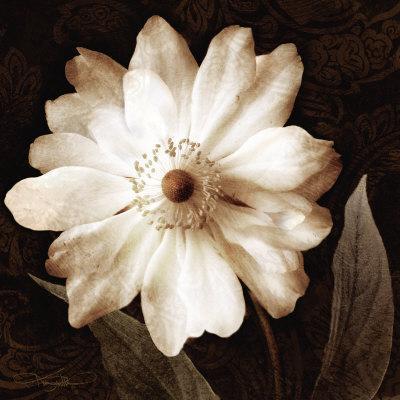 https://imgc.artprintimages.com/img/print/paisley-blossom-ii_u-l-f3r48d0.jpg?p=0
