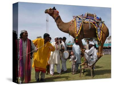 Pakistan Folk Dancers Perform; Owner Sits with His Camel, Annual Festival Horse and Cattle Show