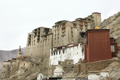 https://imgc.artprintimages.com/img/print/palace-in-leh-with-lamo-house-below-ladakh-india-asia_u-l-q12qpkj0.jpg?p=0