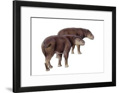 Palaeosyops--Framed Art Print