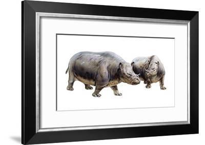 Palaeotherium--Framed Art Print