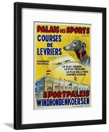 Palais Des Sports - Courses De Levriers - Sportspalais Windhondenkoersen Dog Racing Poster