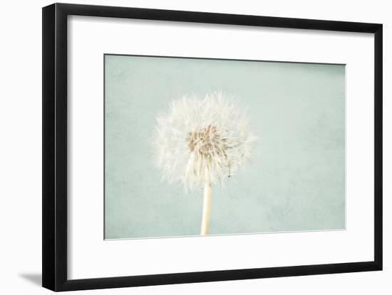 Pale Blue Wishes-Susannah Tucker-Framed Photographic Print