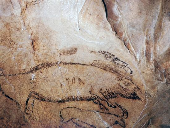 Paleolithic cave-painting of a bison and ibex. Artist: Unknown-Unknown-Giclee Print