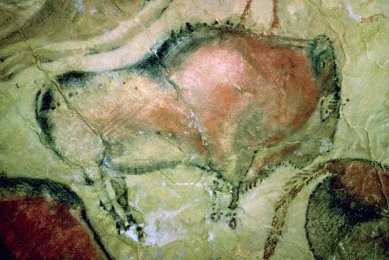 Paleolithic cave-painting of Bison from Spain. Artist: Unknown-Unknown-Photographic Print