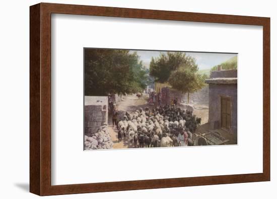 Palestine', c1930s-Ewing Galloway-Framed Art Print