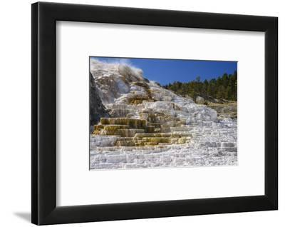 Palette Spring, Travertine Terraces, Mammoth Hot Springs, Yellowstone National Park, Wyoming-Gary Cook-Framed Photographic Print
