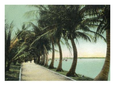 Palm Beach, Florida - Palm Walk Along Lake Worth-Lantern Press-Art Print