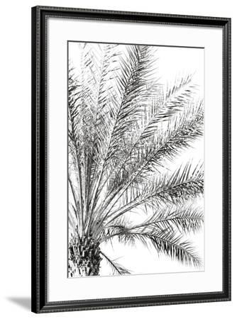 Palm Breeze Noir-Irene Suchocki-Framed Giclee Print