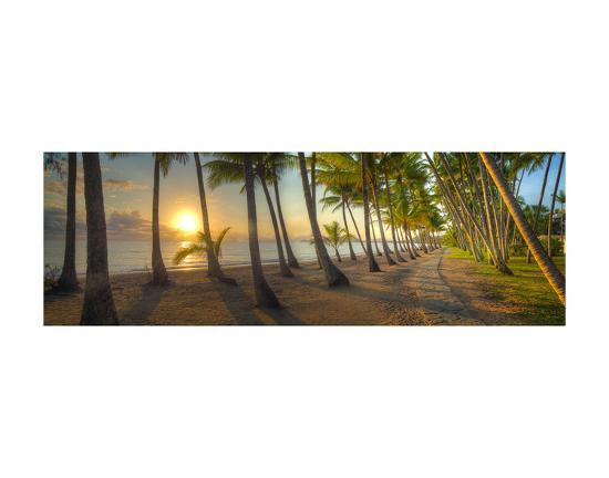 Palm Cove-Doug Cavanah-Art Print