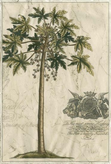 Palm Fresco III--Art Print