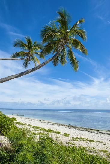 Palm Fringed Kolovai Beach, Tongatapu, Tonga, South Pacific-Michael Runkel-Photographic Print