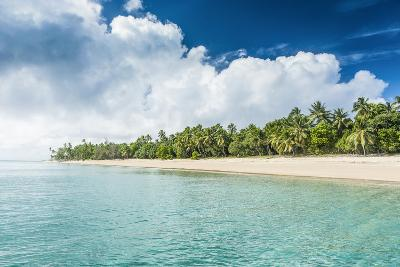 Palm Fringed White Sand Beach in Ha'Apai, Ha'Apai Islands, Tonga, South Pacific-Michael Runkel-Photographic Print