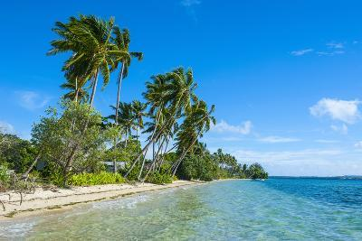 Palm Fringed White Sand Beach on an Islet of Vava'U, Tonga, South Pacific-Michael Runkel-Photographic Print