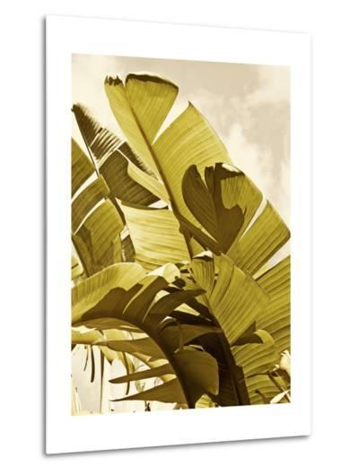 Palm Fronds I-Rachel Perry-Metal Print