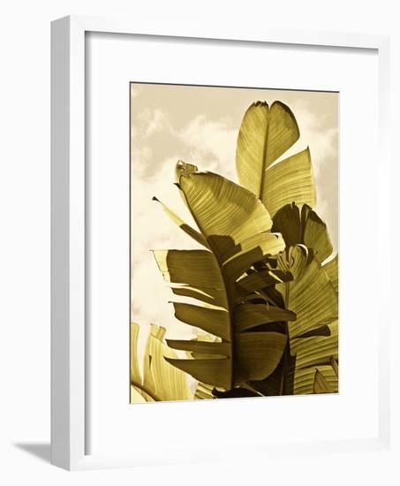 Palm Fronds IV-Rachel Perry-Framed Art Print
