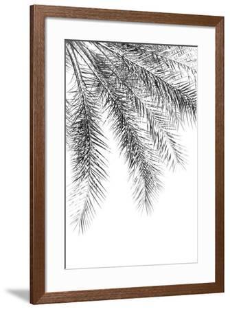 Palm Grace Noir-Irene Suchocki-Framed Giclee Print