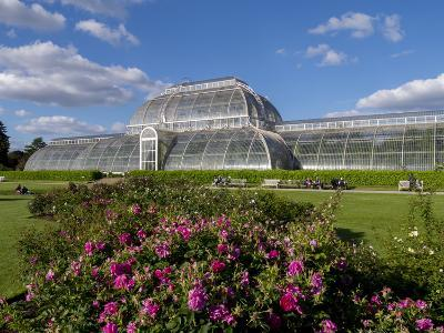 Palm House in Kew Gardens in Summer-Charles Bowman-Photographic Print