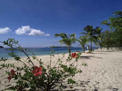 Palm Island, Near Young Island, the Grenadines, Windward Islands-Fraser Hall-Photographic Print