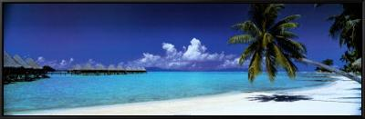 Palm Island Retreat--Framed Canvas Print