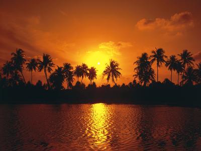 Palm Island, Silhouette, Sundown-Thonig-Photographic Print