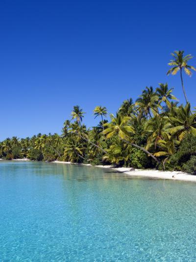 Palm Lined Beach, Cook Islands-Michael DeFreitas-Photographic Print